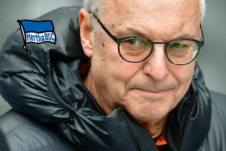 Machtkampf bei Hertha BSC? Gegenbauer kontert Lehmanns Euro-Ansage