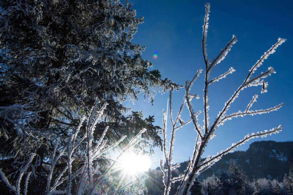 Keine 10 Grad im Schnitt: Bayern 2020 kälter als der Rest des Landes