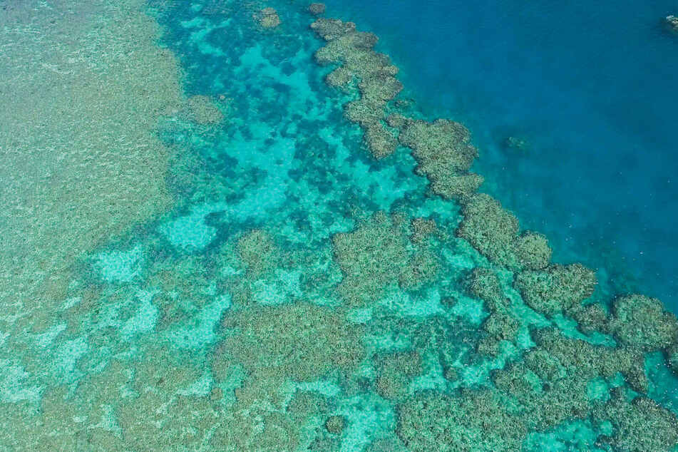 The Great Barrier Reef is so big it can be seen from space.