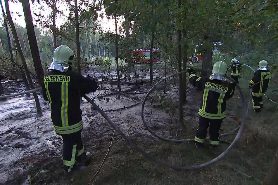 Sachsens ältester Forstwald in Flammen: Feuerwehreinsatz bei Leipzig