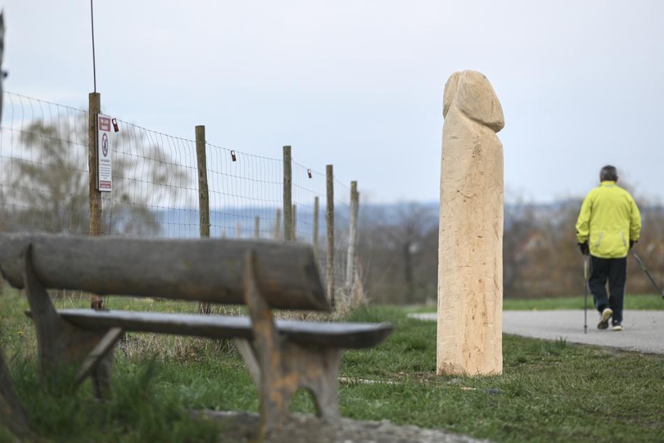 Zwei Meter hoher Holzpenis entdeckt: Wo kommt der denn her?