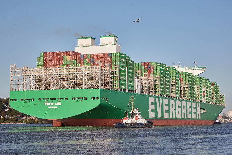 """Die """"Ever Ace"""", das größte Containerschiff der Welt, wird auf der Elbe von Schleppern in den Hamburger Hafen gelotst, um am Containerterminal Burchardkai festzumachen."""