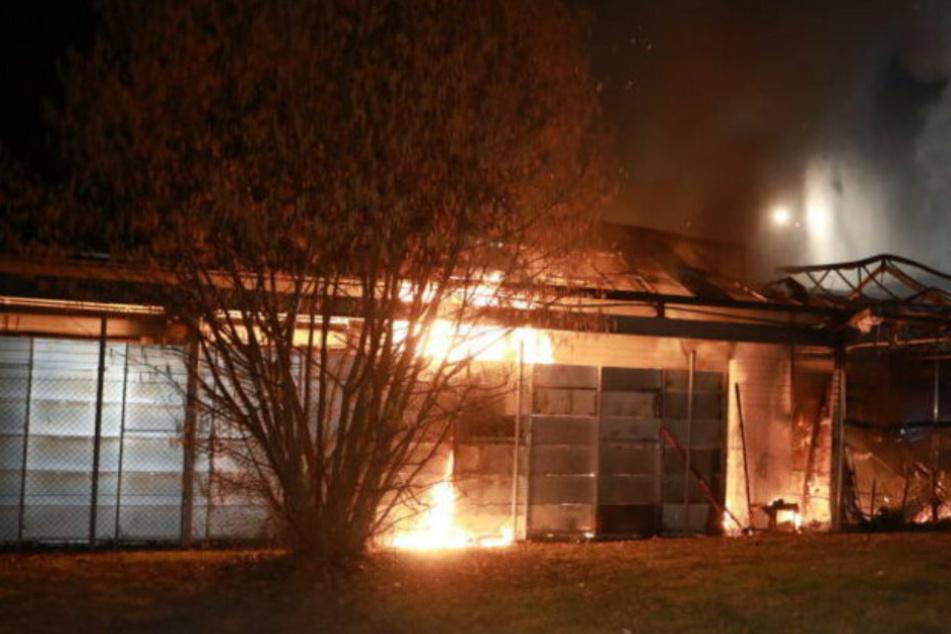 Flammeninferno zerstörte Gartenmarkt: Jetzt wurde ein Tatverdächtiger festgenommen!