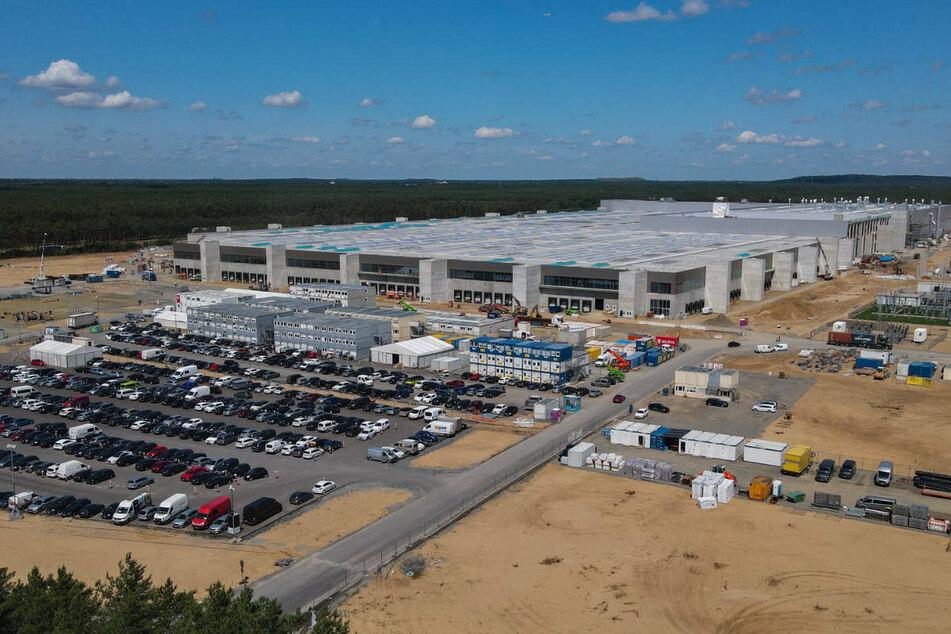 Für den Bau der Tesla Gigafactory in Grünheide ist laut Umweltverträglichkeitsprüfung eine Gesamtfläche von rund 300 Hektar für Ausgleichs- und Ersatzmaßnahmen vorgesehen.