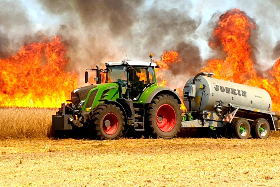 Heftiges Feuer in Brandenburg: Getreidefeld brennt lichterloh!