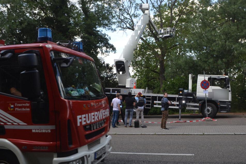 Baumarbeiten in zehn Metern Höhe: Arbeiter tödlich verunglückt