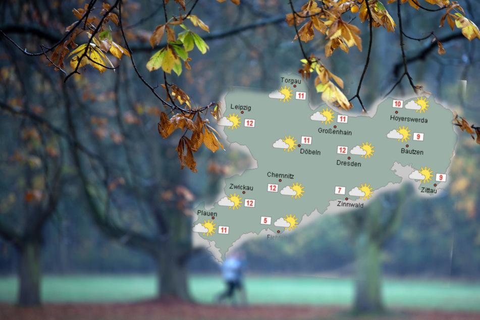Den Herbstspaziergang sollte man vielleicht besser auf eine kleine Regenpause verlegen. (Bildmontage)