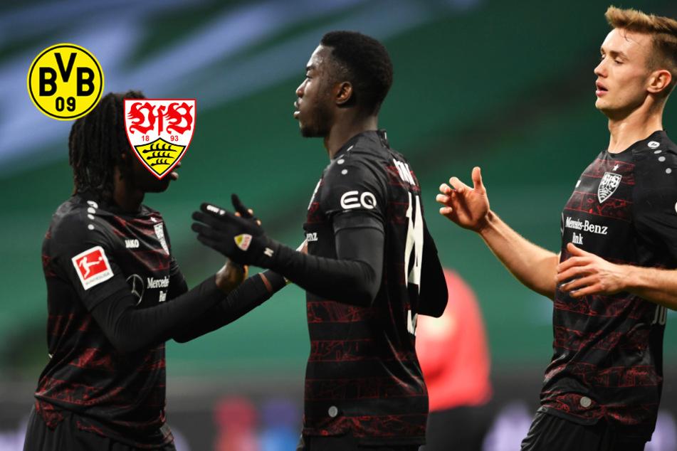 VfB will mutig sein! Verliert der BVB den Anschluss im Rennen um die Meisterschaft?