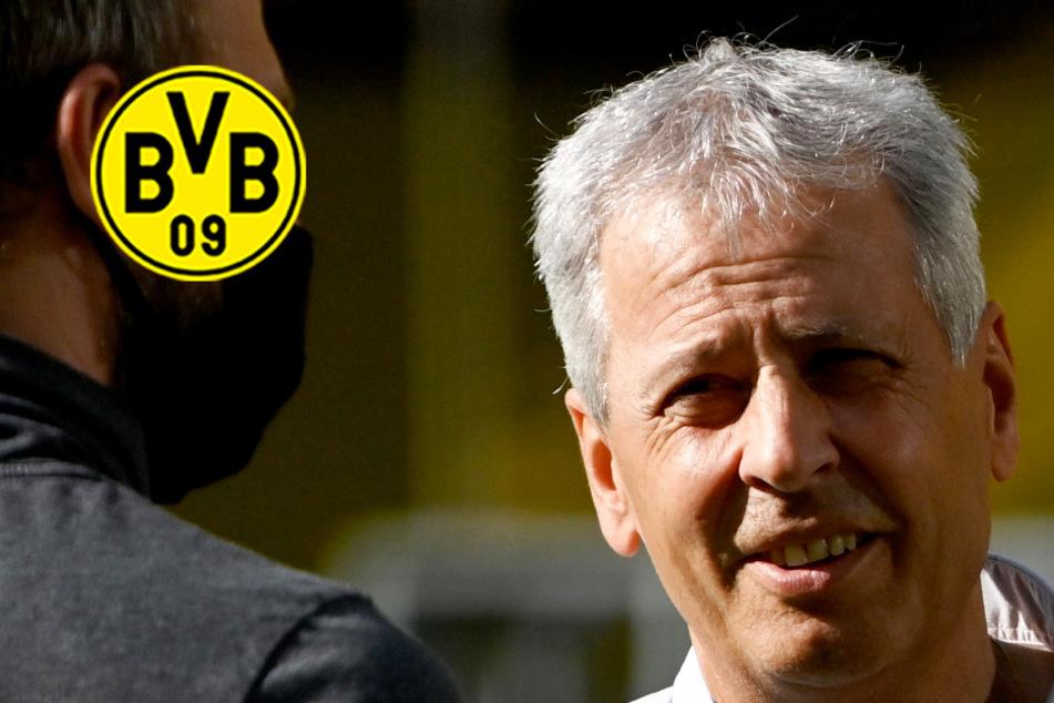BVB-Coach mit mysteriöser Aussage! Hört Lucien Favre als Dortmund-Trainer auf?
