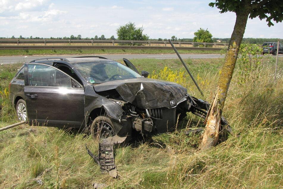 Das Auto raste erst durch einen Zaun und krachte dann in einen Baum.