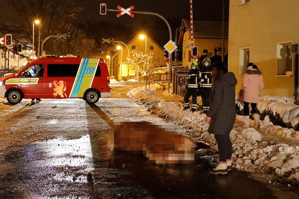 Chemnitz: Pferd auf Straße verunglückt