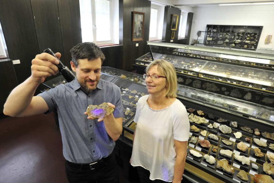 Museums-Geologe Sven Neuhaus (43) demonstriert seiner Chefin Petra Lewey den fluoreszierenden Effekt an einem der 20000 Ausstellungsstücke.