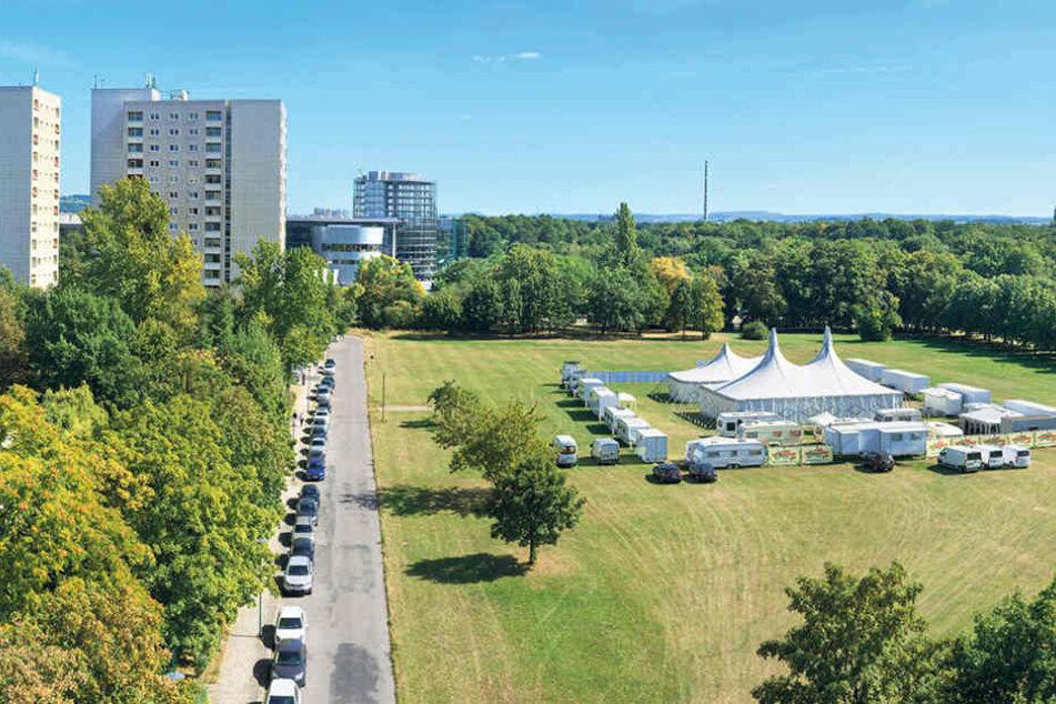 Die Cockerwiese am Großen Garten könnte in naher Zukunft bebaut werden.