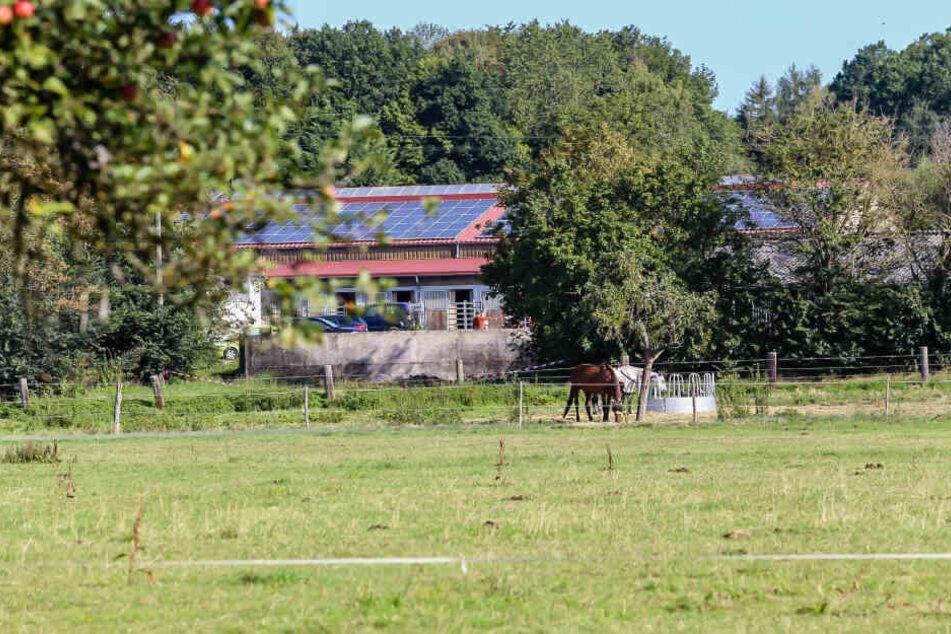 Das Foto zeigt den Reiterhof bei Hofheim, auf dem die Leiche gefunden wurde.