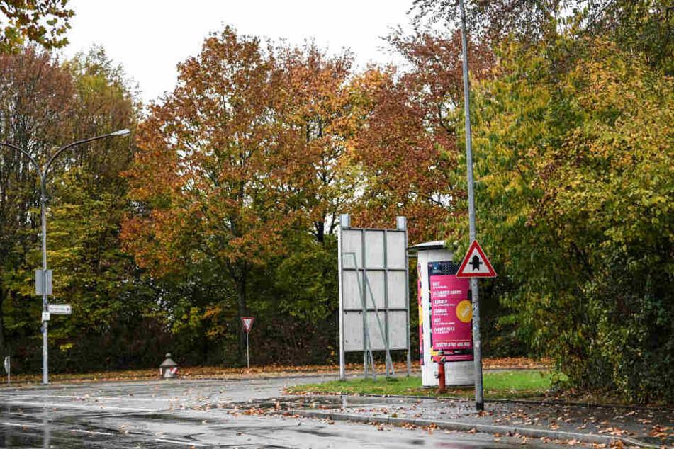 In der Nähe des Tatorts in Freiburg: Hier kam es zu einer mutmaßlichen Gruppenvergewaltigung einer 18-jährigen Studentin.