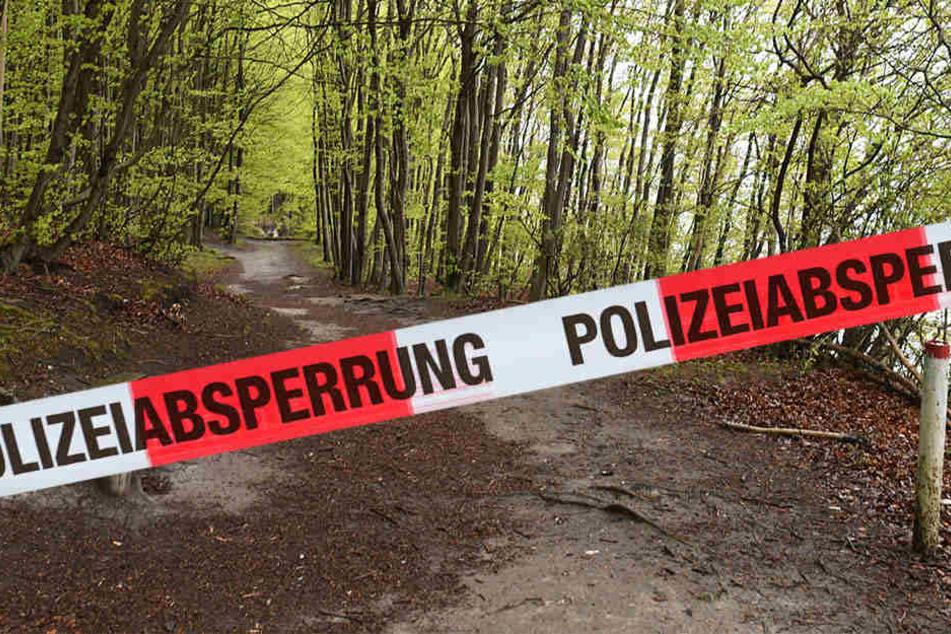 Eine Frau hat beim Wandern im Harz einen grausigen Fund gemacht. Sie entdeckte eine Männerleiche. (Symbolbild)