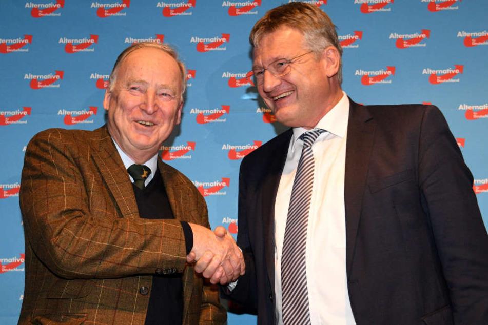 Das neue Führungsduo der AfD: Alexander Gauland (li.) und Jörg Meuthen.