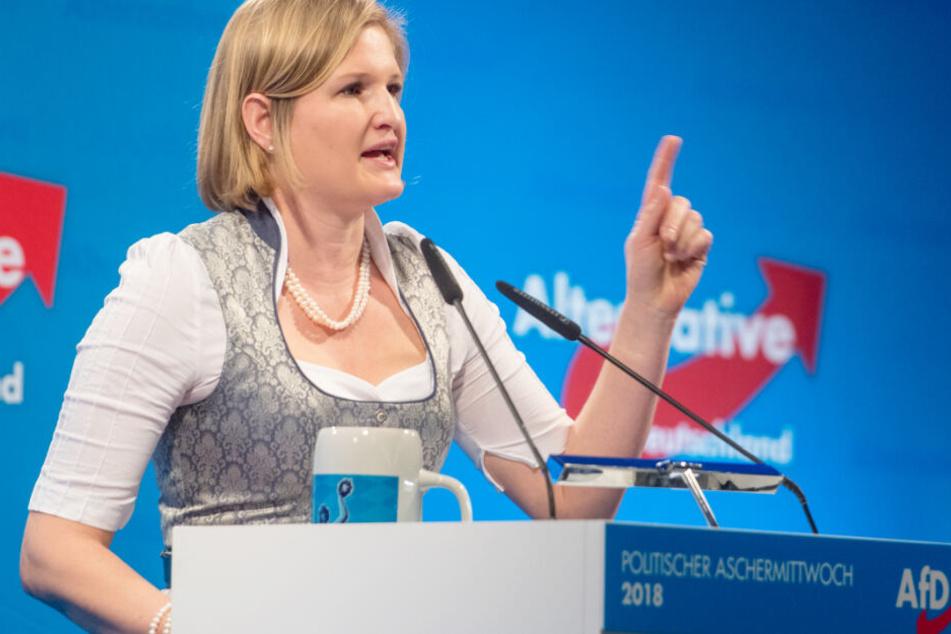 Markus Plenk hatte die Fraktion zusammen mit der Co-Vorsitzenden Katrin Ebner-Steiner geführt.