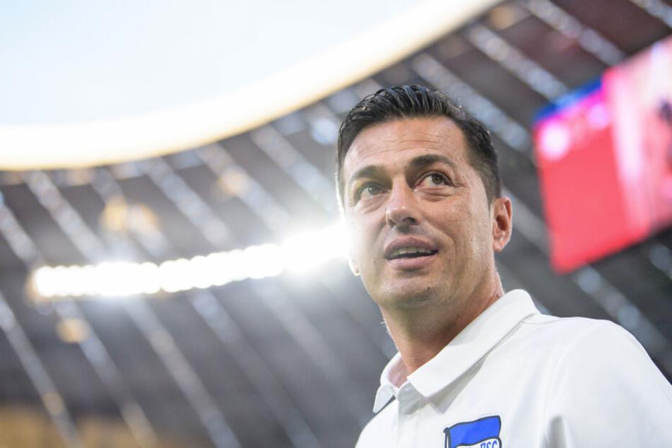 Ante Covic feiert am Sonntag seine Heim-Premiere in der Bundesliga.