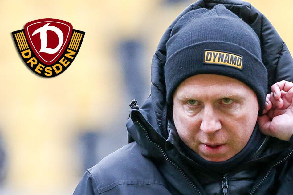 Dynamo Dresden: Maik Walpurgis sitzt nicht auf der Trainerbank in Hamburg