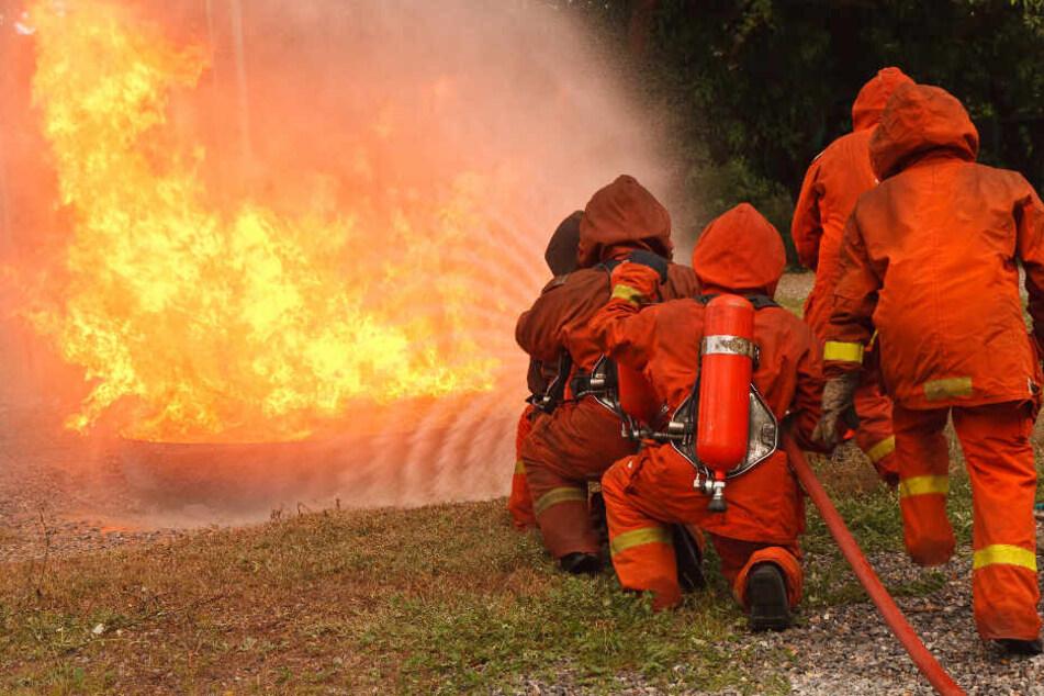 Ein Jugendlicher zündelte mutwillig, um den Brand im Anschluss mit den Kameraden der Freiwilligen Feuerwehr löschen zu können. (Symbolbild)