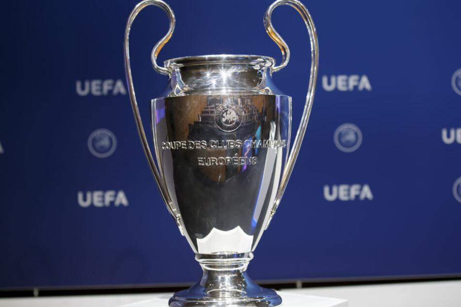 Schafft es der FC Bayern diese Saison die Trophäe zu ergattern?