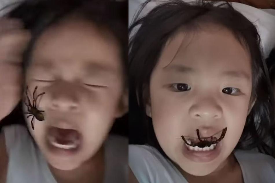 Dreijährige dreht durch, als sie Spinne aus ihrem Mund kriechen sieht