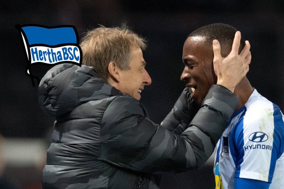 """Herthas Offensivmann Lukebakio blickt zu Klinsmann auf: """"Eine Legende"""""""