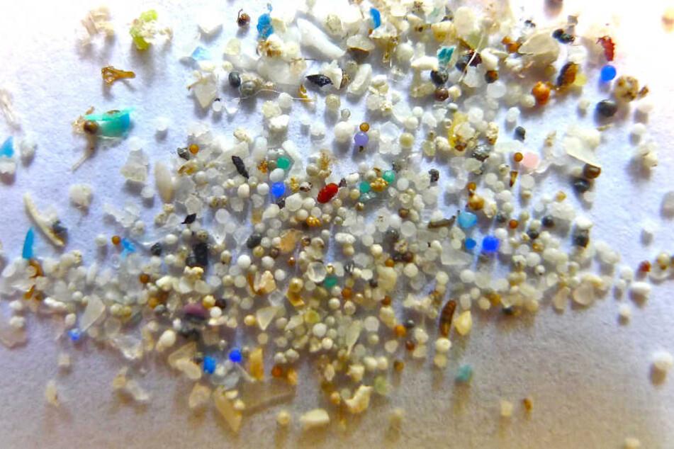 Die Plastikteilchen verschmutzen die Gewässer und werden oft von Fischen aufgenommen.