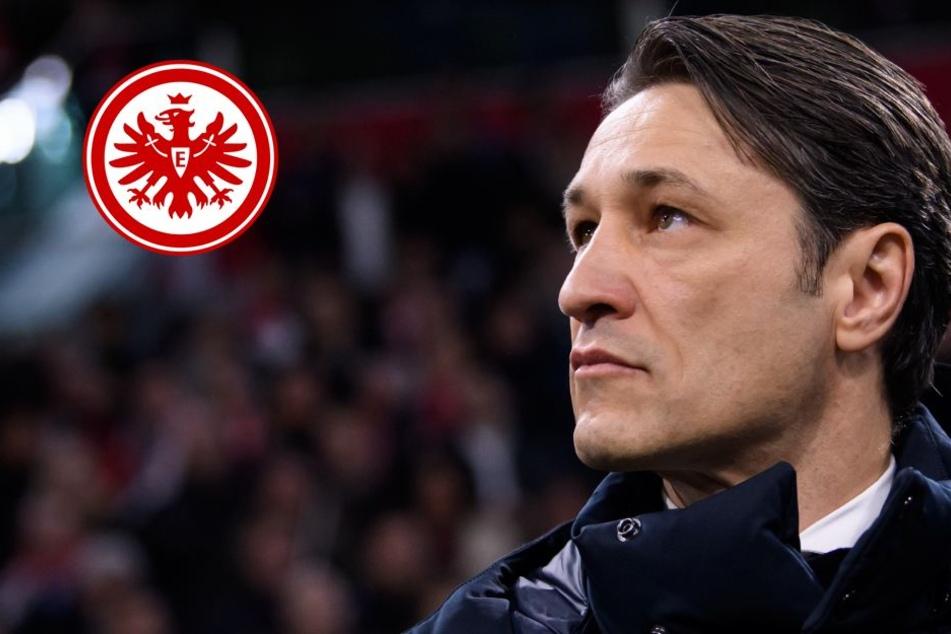 """Niko Kovac sagt """"ganz ehrlich"""", was er von seinem Ex-Klub Frankfurt hält"""