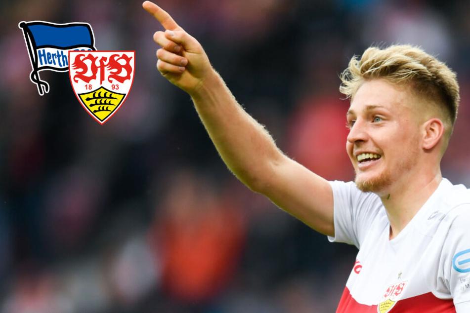Transfer-Gerücht: Wechselt Ascacibar vom VfB zu Klinsmanns Hertha?