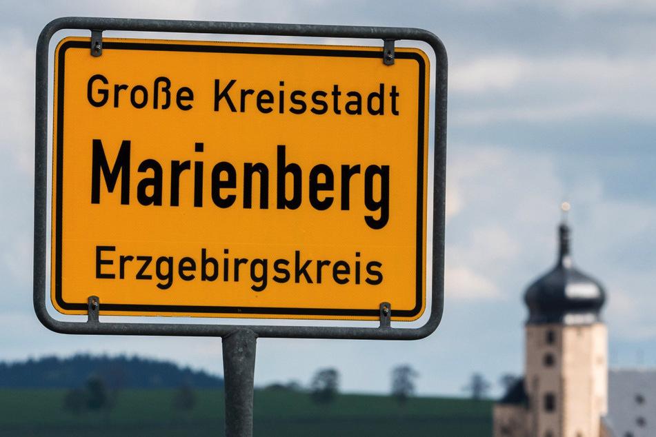 Wer in der Nähe von Marienberg im Wald unterwegs ist, kann auf Spuren von Wölfen stoßen.