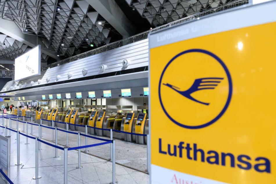 Streik bei der Lufthansa, 1300 Flüge abgesagt! So ist die aktuelle Lage