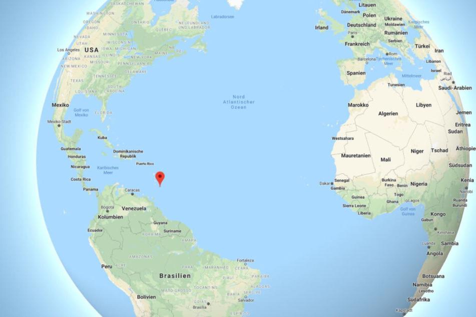 Knappe neun Stunden fliegt man von London nach Bridgetown, die Hauptstadt von Barbados.
