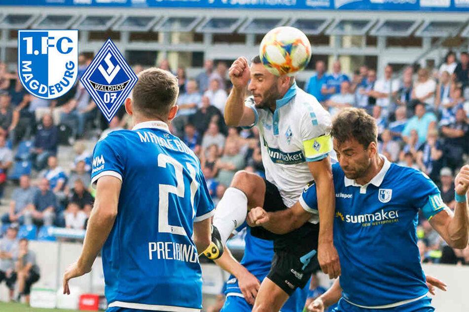 Chancenwucher! 1. FC Magdeburg kommt gegen Mannheim nicht über Remis hinaus