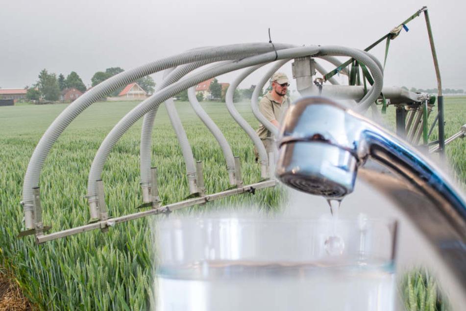 Pestizide aus der Landwirtschaft gelangen in Grundwasser. (Symbolbild)