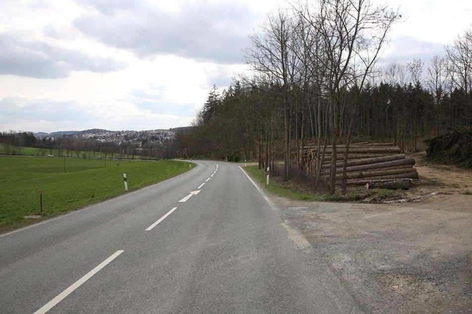 Ein Waldstück am Voightsgrüner weg heute. Hier wurde die schreckliche Tat begangen. Die Straße in der Nähe der Talsperre Pöhl war schon damals schwach frequentiert.