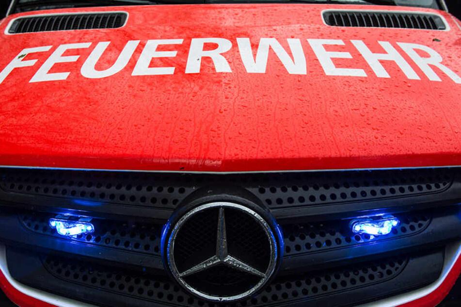 Jede Menge neue Fahrzeuge für die Berliner Feuerwehr.