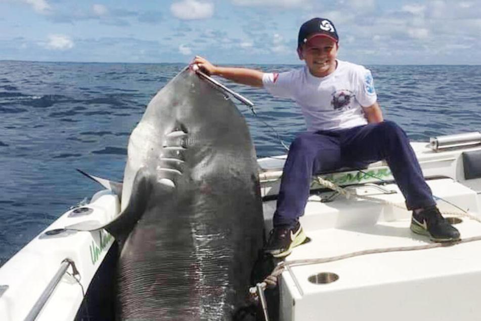 314-Kilo-Hai geangelt: Kleiner Junge (8) zieht dicken Brocken aus dem Wasser