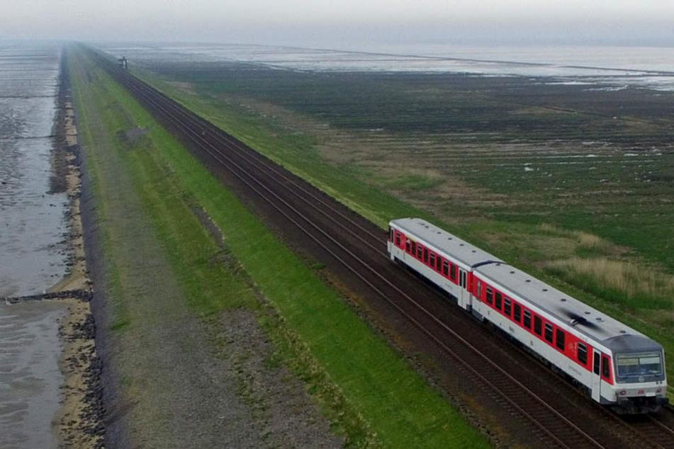 Über den Hindenburgdamm fährt die Marschbahn vom Fetsland nach Sylt. Die gesamte Strecke soll nun ausgebaut werden.