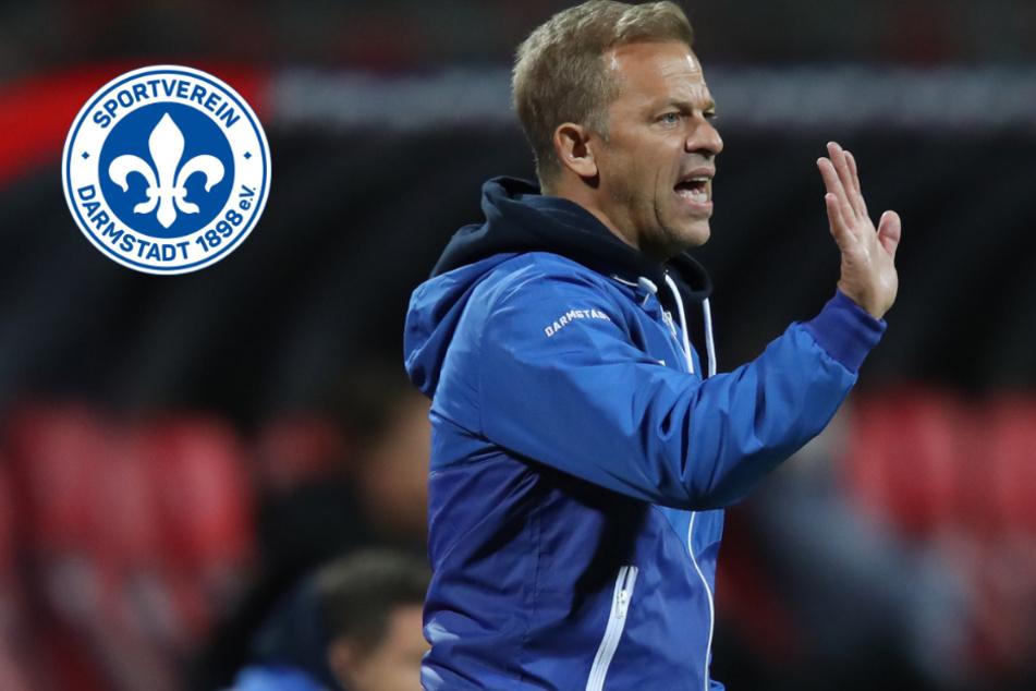 Nach mittelmäßigem Saison-Start: Lilien und Coach Anfang bereits auf Kriegsfuß?