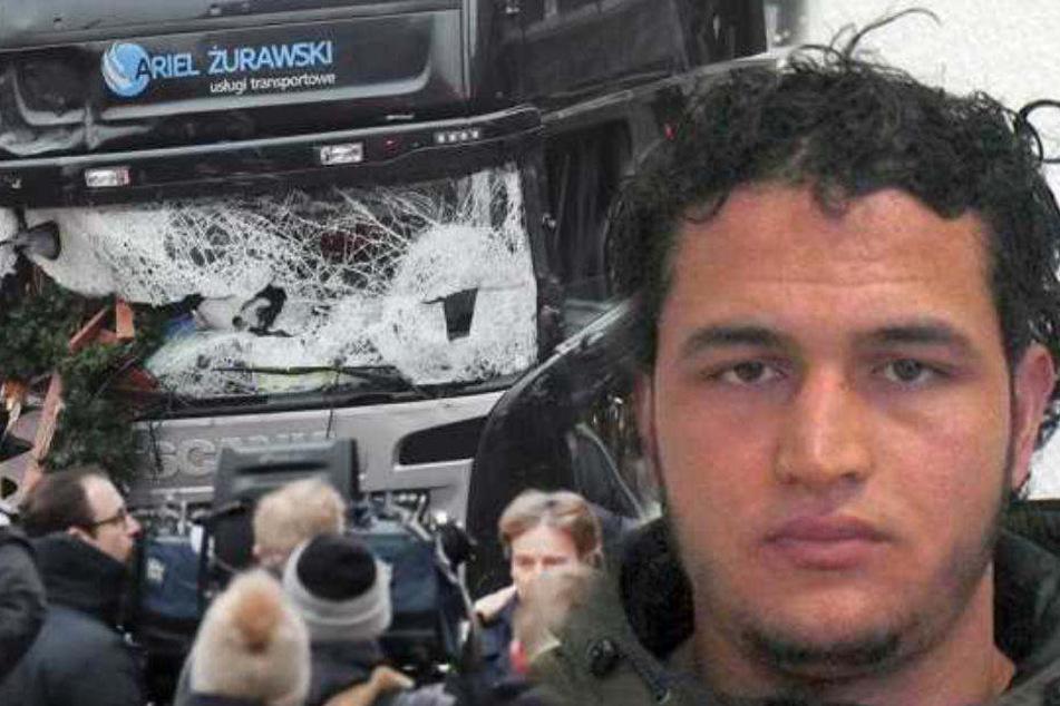Weihnachtsmarkt-Attentäter Anis Amri (†24): Polizei beging hunderte Fehler!