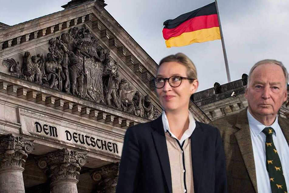 """Wird die AfD in den Bundestag einziehen? Aktuelle Umfragen sagen """"ja""""."""