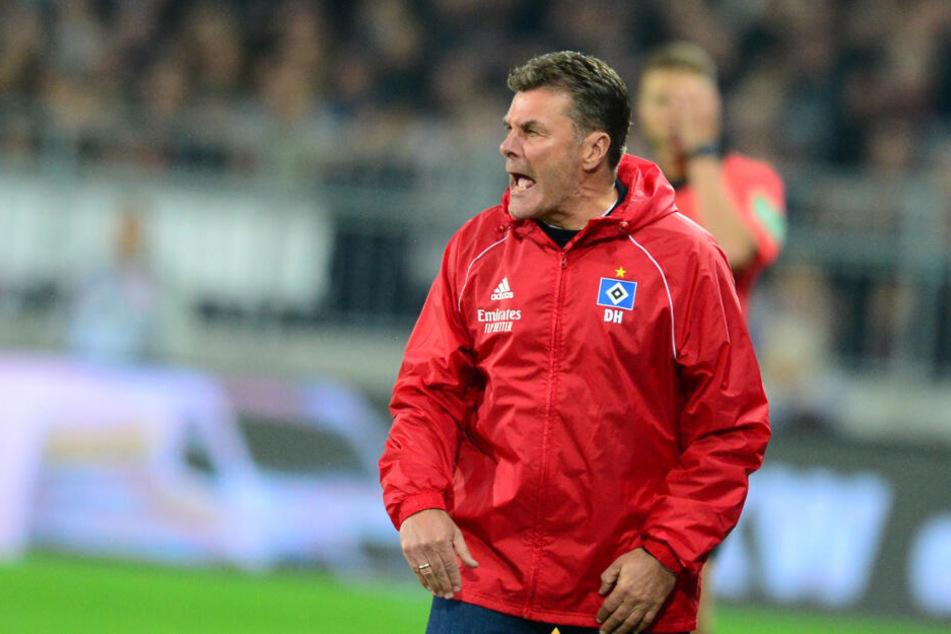 HSV-Trainer Dieter Hecking teilt gegen die Fans aus.