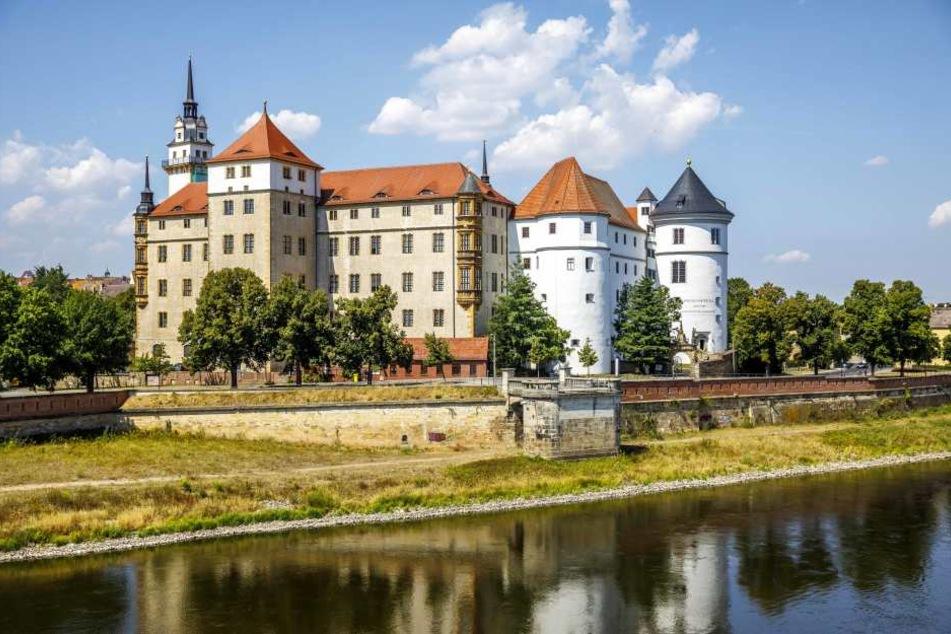 Schloss Hartenfels thront in Torgau über der Elbe. Seit fast 600 Jahren werden dort Bären gehalten. Sie gehören zum Schloss wie der Große Wendelstein, der Lange Gang oder die Schlosskapelle.