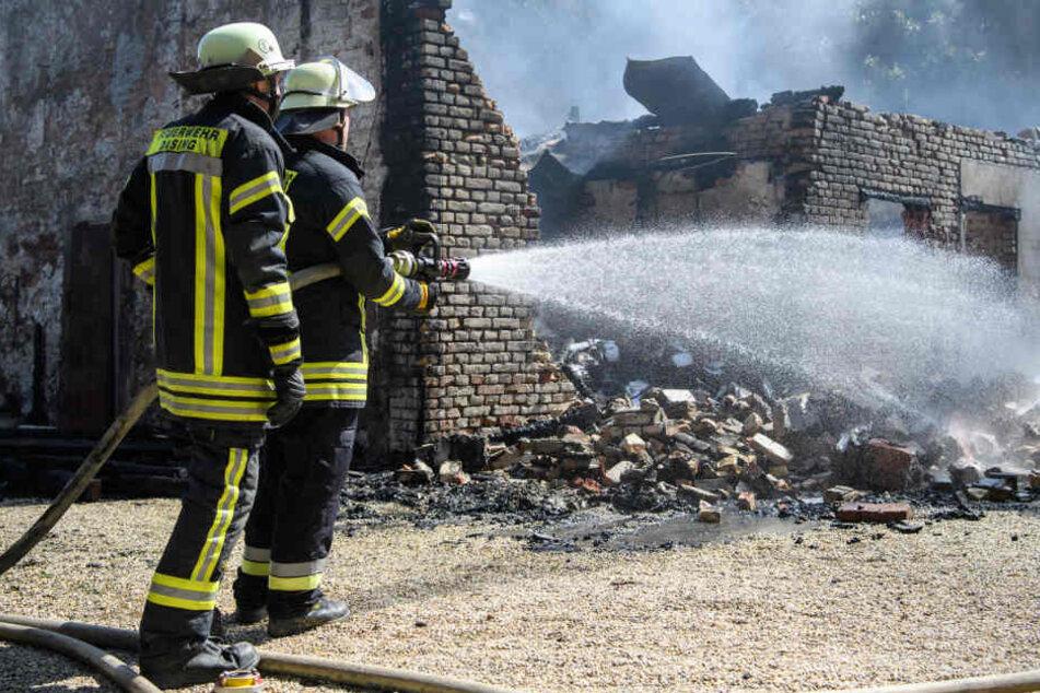 Insgesamt 408 Feuerwehrmänner waren im Einsatz. Erst nach Stunden war der Brand gelöscht.