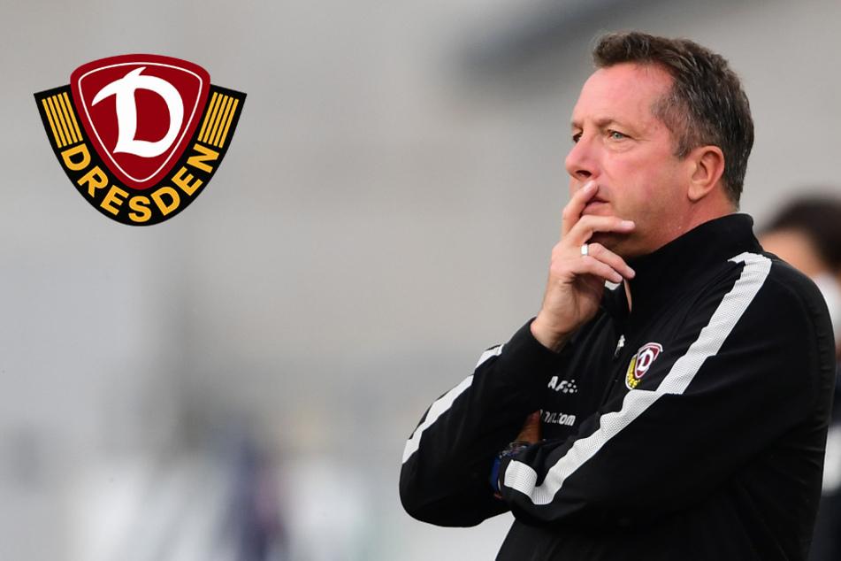 Dynamo mit zwei Krachern: Testspiele gegen Berlin und Braunschweig