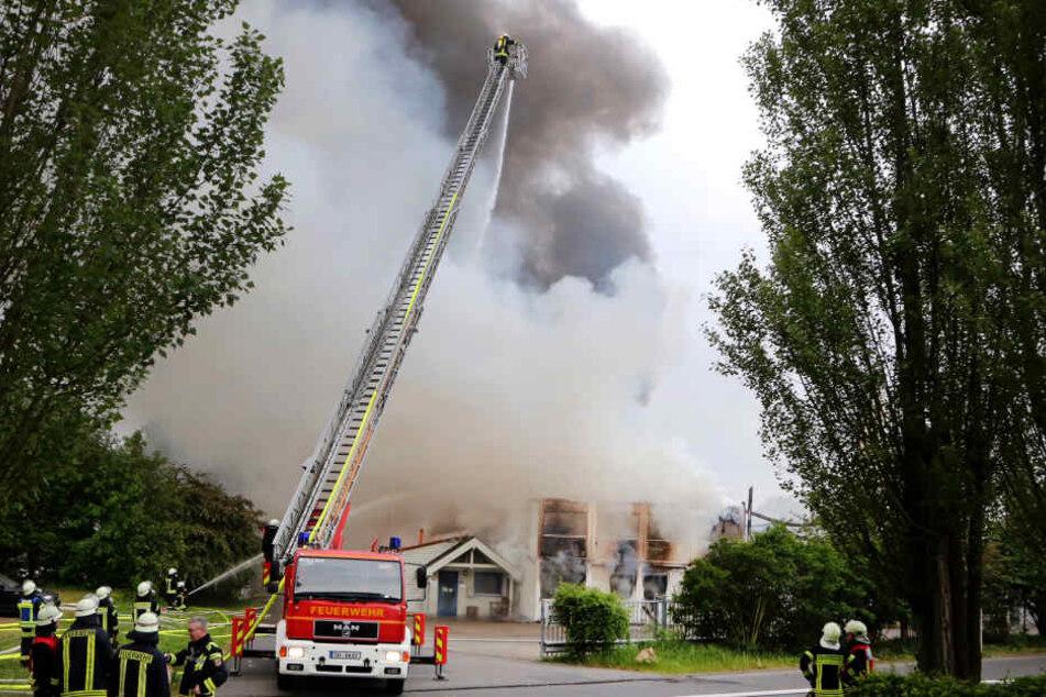 Riesige Rauchwolke: 250 Kameraden im Einsatz, Warnung für Anwohner