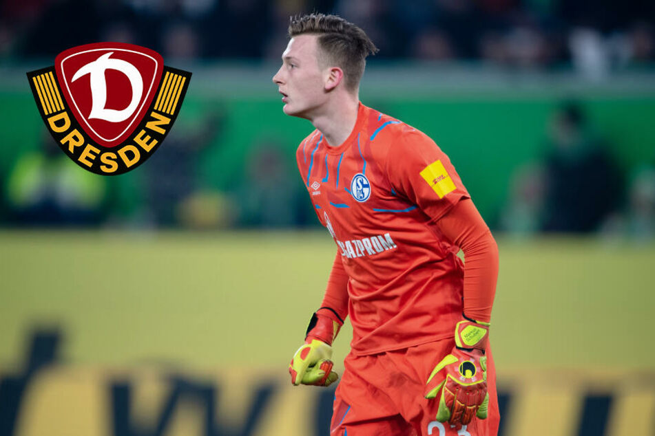 Ex-Dynamo Schubert fühlt sich wohl auf Schalke: Wird er bald die neue Nummer 1?