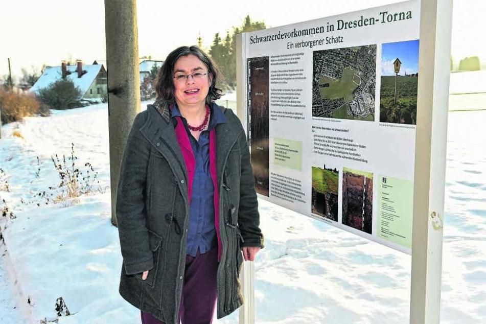 Umweltbürgermeisterin Eva Jähnigen (51, Grüne) zeigt die Infotafel für  Dresdens wertvollsten Boden.